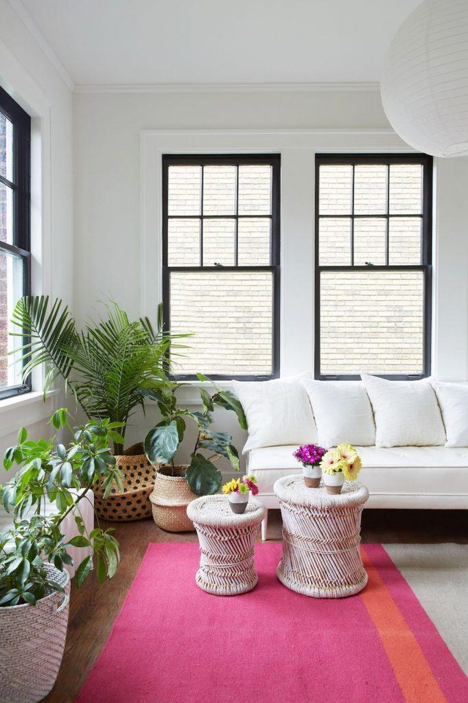 Phòng khách với cây xanh và thảm đầy màu sắc